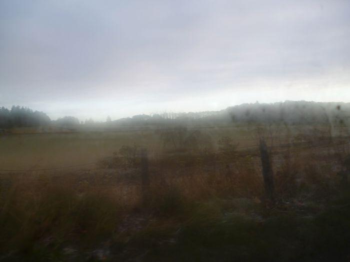 scenery1