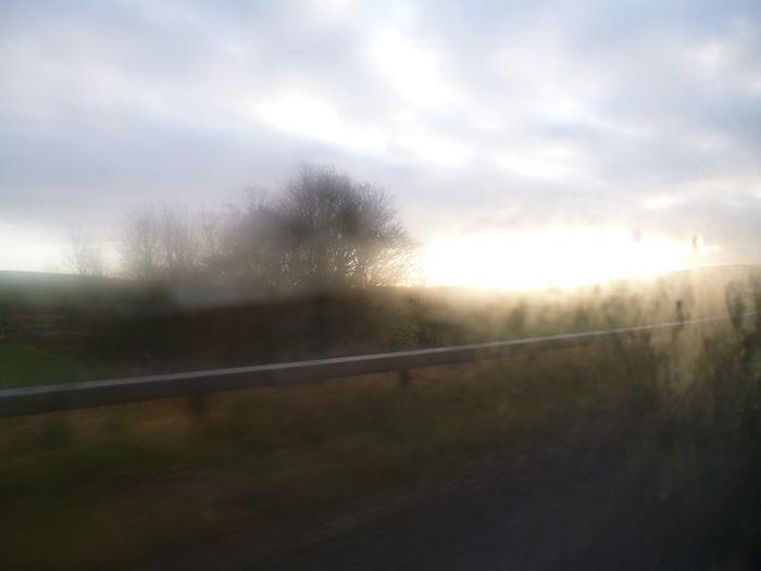 scenery6