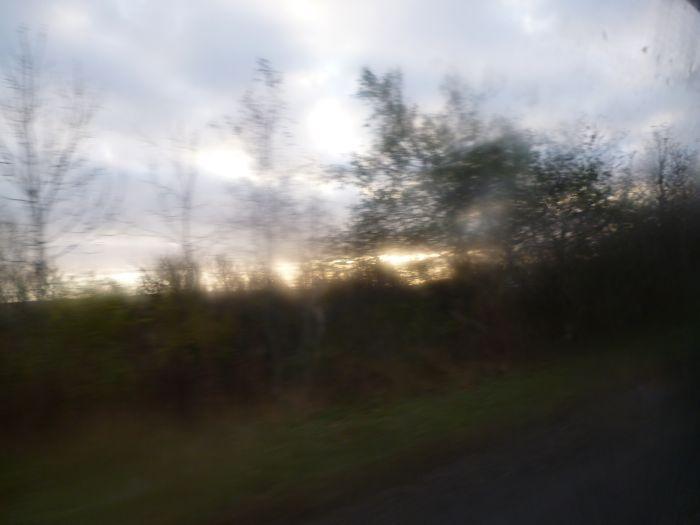 scenery7